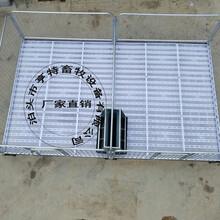加厚热镀锌管焊接小猪保育床仔猪床亨特畜牧全国发货