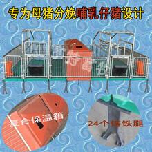 湖南怀化分娩产子栏双猪位产床母猪单体产床