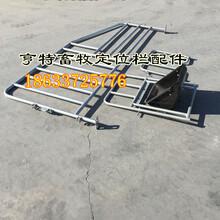 江西萍乡母猪定位栏热镀锌猪栏关10猪限位栏尺寸