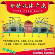 安徽黄山复合母猪产床/定位栏猪床加宽母猪位价格