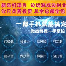专业定制手游软件定制各种手机网络游戏软件