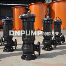 大功率大型污水泵图片