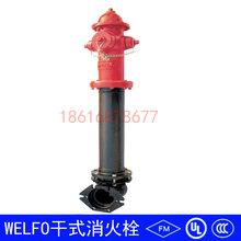 干式消火栓FM/UL认证消火栓WELF0干式消火栓室外消火栓图片