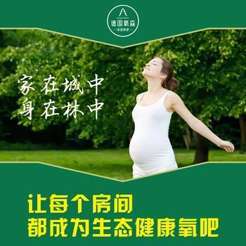 氧山净醛泥德国氧森不止于环保为中国家庭健康而来