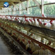 鸡笼子厂家蛋鸡笼现货直销价格优惠图片