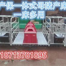沃森养猪设备母猪产床复合板产床铸铁食槽厂家直销