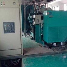 寶山收購柴油機消防水泵-帕歐柴油發電機組回收