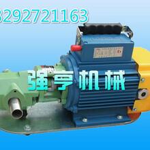 安徽强亨机械WCB手提式齿轮泵典型的皂液稀油泵