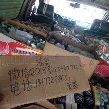 香港水客、货柜、商务车、空运货代