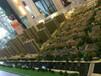 杭州湾嘉悦城国内超一流的万科物业管理,杭州湾大楼盘杭州湾万科物业小区