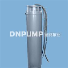 供应200QJ型井用潜水电泵详情-德能泵业