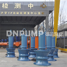 农田灌溉用潜水轴流泵的优点天津水泵厂家图片