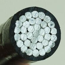 电线电缆带钢芯绝缘架空线JKLGYJ电线厂家量大从优