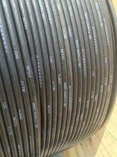 电线电缆绝缘架空线JKLYJ量大从优电线厂家