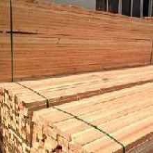新余白松建筑木方批发图片
