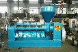 遼寧盤錦電加熱小型螺旋擠油機廠家遼寧家用大豆榨油機價格