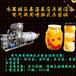 廠家直銷水果罐頭高溫高壓殺菌設備,電氣兩用噴淋式殺菌鍋