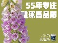 养虾池漆,工业化生态养虾池漆,台湾南宝图片