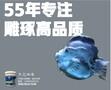 养鱼池漆,工厂化循环水养鱼池漆,台湾南宝图片