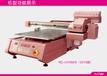 铜陵广东广州诺彩uv卷材打印机布料印花机