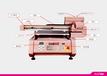 海南省直轄諾彩UV打印機彩色數碼打印機愛普生uv平板打印機