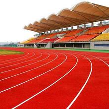 高校塑胶跑道设计_园区硅PU蓝球场建造_车间PVC地板绿扬体育