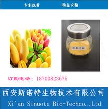 芒果粉SC備案資質齊全代餐粉專業廠家芒果果粉圖片