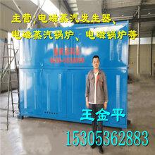 厂家直销电磁蒸汽发生器/电磁蒸汽锅炉/10秒出蒸汽/节能环保图片