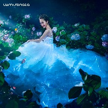 新品发布智能夜光婚纱震撼来袭光之精灵发光婚纱光纤婚纱礼服