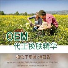 广州精华液加工ODM厂商