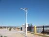 太阳能路灯照亮低碳新生活
