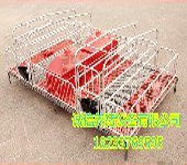 诚信新款养猪设备加高围栏产保一体智能化母猪产床全复合板品质高