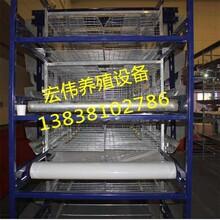 自动研发传送带清粪机清粪机价格