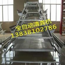 河南宏伟厂家直销蛋鸡自动化设备层叠式鸡笼价格