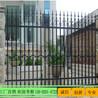 学校锌钢围墙佛山工业铁栅栏定做广州番禺铁艺护栏厂家