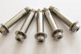 304拉爆螺丝内爆壁虎锈钢膨胀螺栓201内膨胀螺栓m8螺栓厂家批发