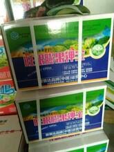 内蒙古大棚蔬菜用膨果增产冲施肥旺根膨果钾宝