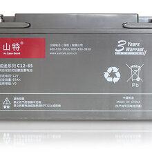 山特SANTAK城堡系列C12-6512V65AHUPS专用阀控式铅酸蓄电池