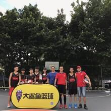大鲨鱼篮球培训,深圳最好的篮球培训