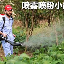 汽油施肥機背負式噴霧機噴粉機打藥機噴藥工具農用撒肥機圖片