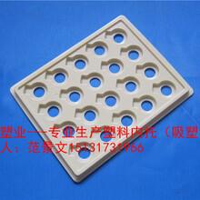 鑫鑫生产蜡像吸塑托盘图片
