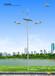 太阳能路灯新农村建设路灯30W大功率LED365天天天亮