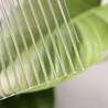 安乡县3mm耐力板灯箱面板阳光板pe保护膜