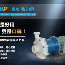 腾龙CQB系列氟塑料磁力泵图片