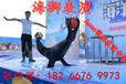 海狮表演行情