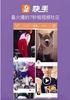 杭州快手App广告投放_快手广告开户
