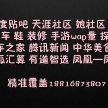 江门凤凰新闻凤凰凤羽广告开户电话_凤凰手表现户图片