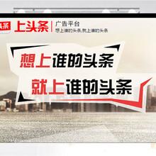 广西今日头条核心代理商联系电话是多少?图片