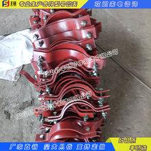 豐碩公司專業生產管道支吊架管夾電力標準D3型雙螺栓管夾圖片