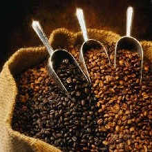 上海咖啡豆报关代理,上海进口代理公司